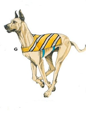 dog clothing patterns